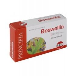 Boswellia estratto secco 60...