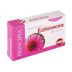 Echinacea estratto secco 60...