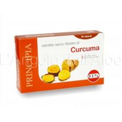 Curcuma estratto secco 60 capsule